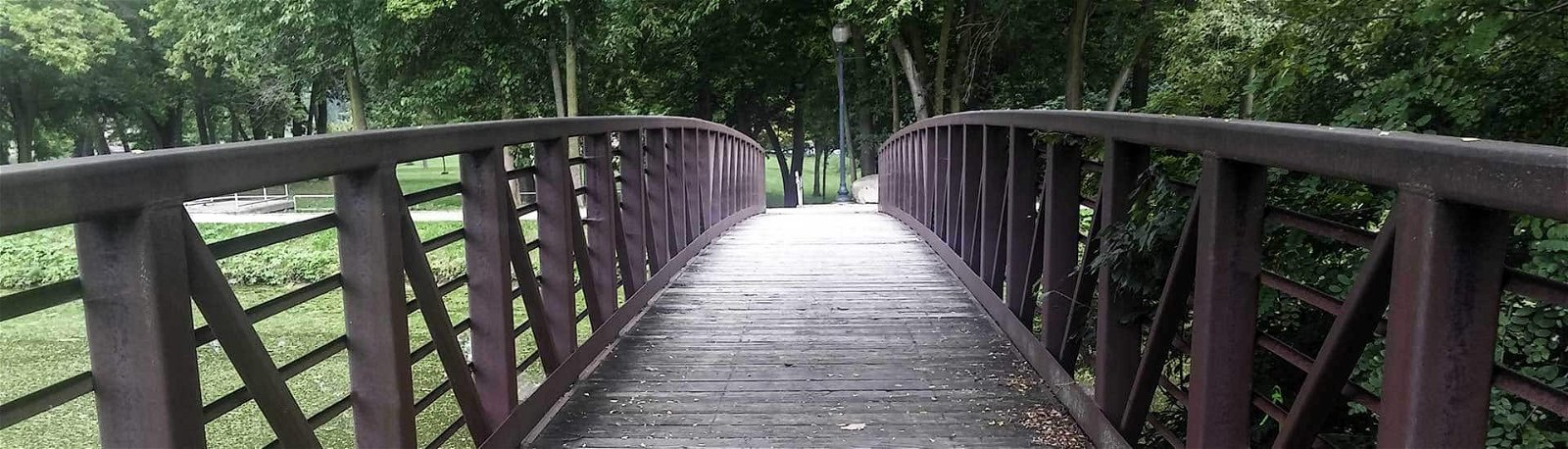 bridge over canal and trees
