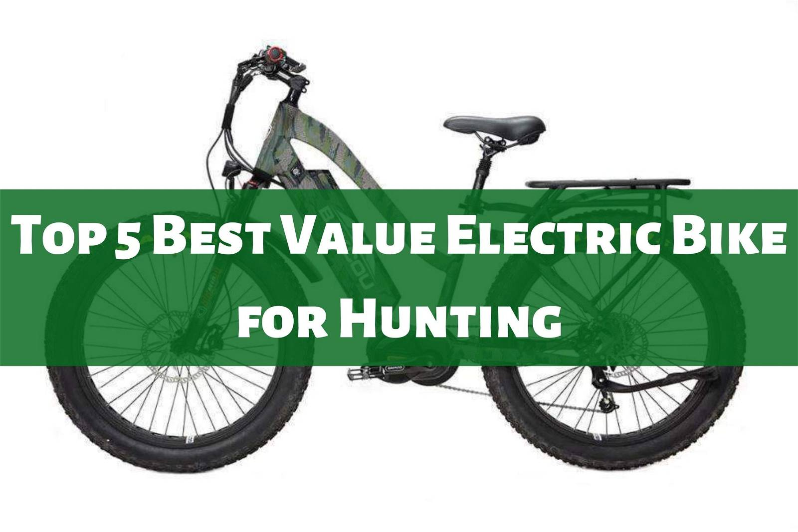 Top 5 Best Value Electric Bike for Hunting
