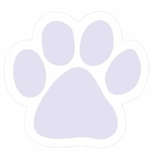 Forget me not purple paw