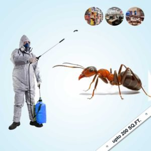 Ant's Complete Pest Control