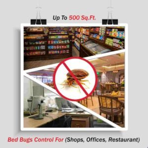 Prep Services for Bed Bugs