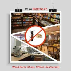 Wood Borer Control for Offices up to 5000 sq. ft.